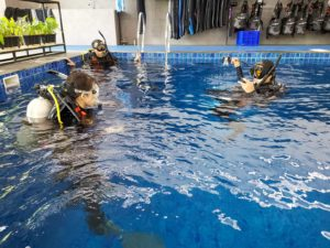 Swimming and Diving Courses in Bali | Alpha World Diving