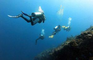 Bali Diving Site | Best Dive Sites in Bali | Alpha World Diving