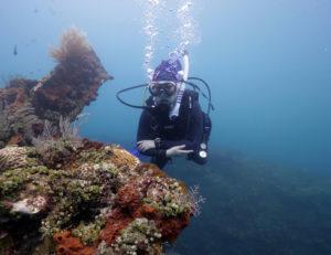Tulamben Scuba Diving | Bali Diving Course | Alpha World Diving