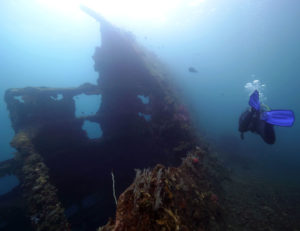 Wreck Diving in Tulamben Bali | Bali diving Package | Alpha World Diving