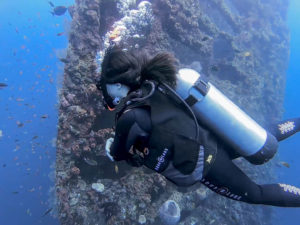Diving in Tulamben | Bali diving Courses | Alpha World Diving
