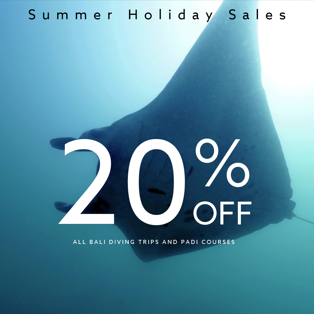Summer Holiday Sale 2 | Alpha World Diving