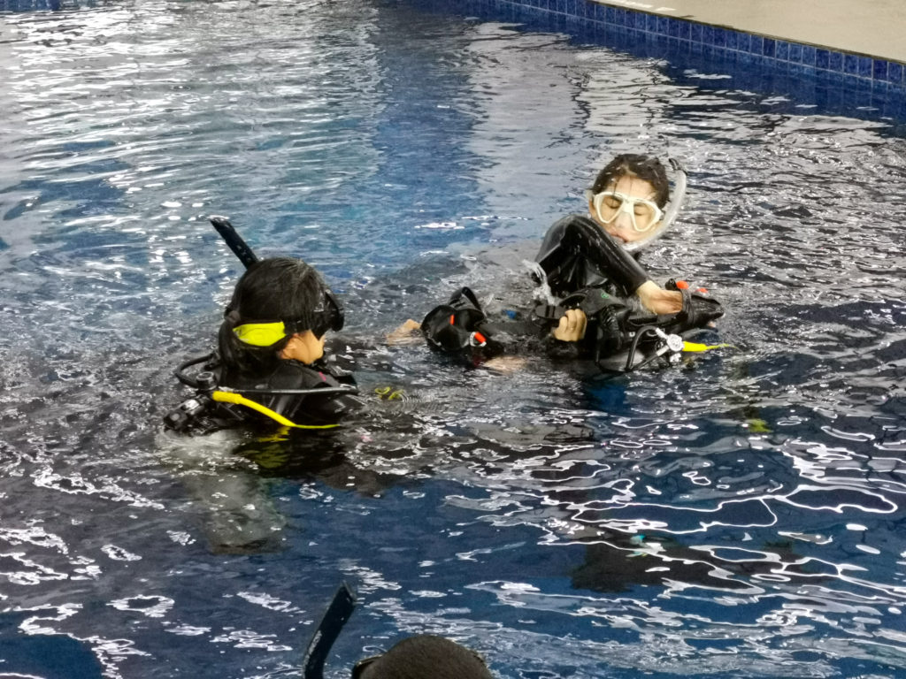 PADI Open Water Courses in Bali | Alpha World Diving
